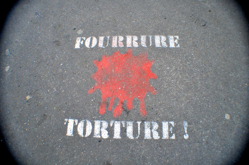 Fourrure Torture !