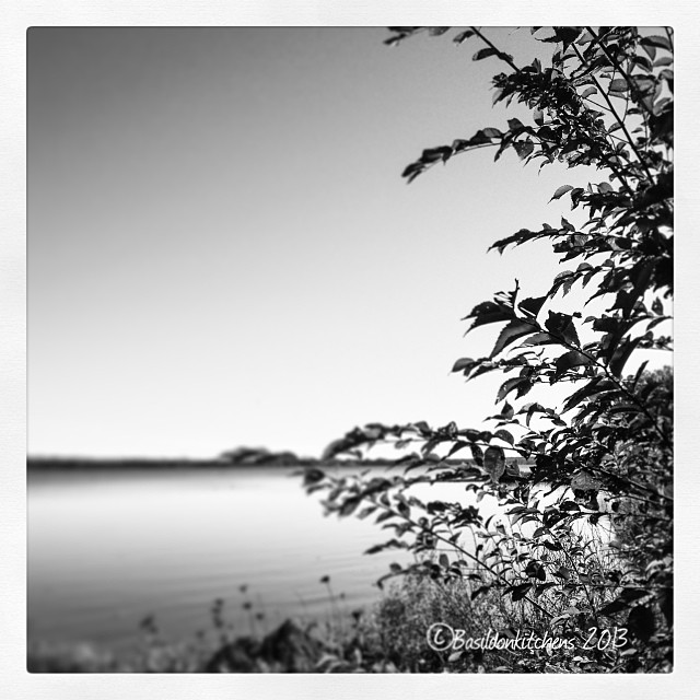 Oct 28 - just for me {photography is my thing; I do just for me but get to share with lots if like minded people} #fmsphotoaday #blackandwhite #bayofquinte #belleville #princeedwardcounty
