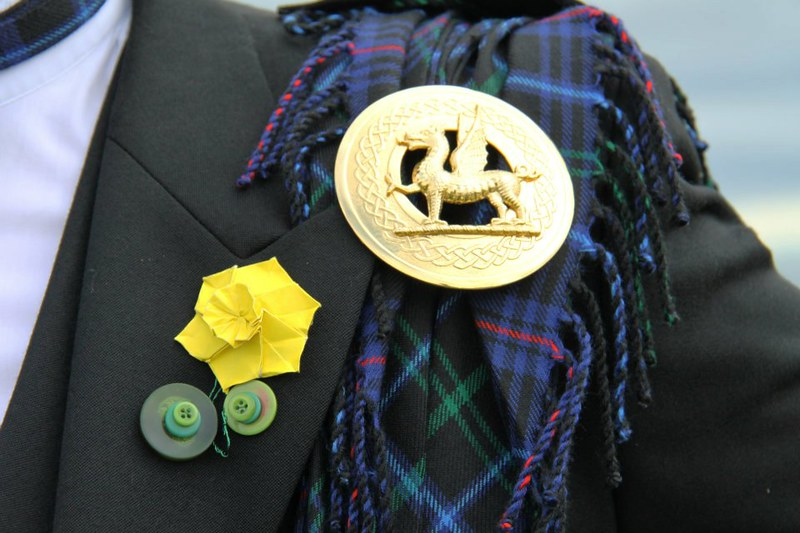Welsh Fly Plaid, Pin & Daffodil Origami