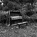 piano fixed shot dec 1st