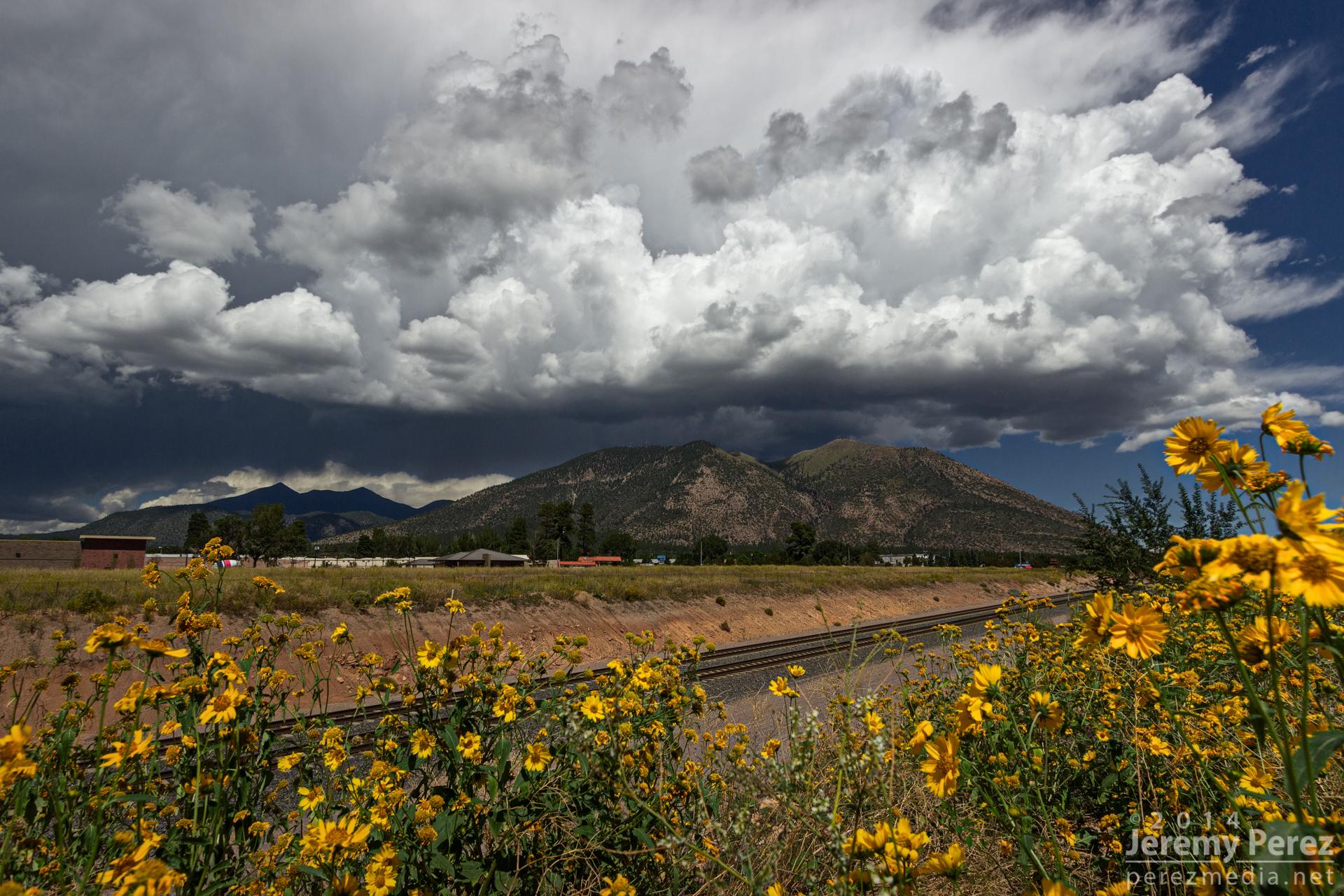 Elevation of Kachina Trail Flagstaff AZ USA