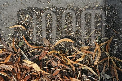 Tilstoppet regnvandsrist