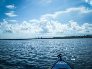 Indian River Paddling-014