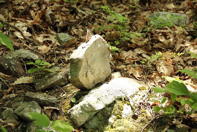 20140523_Seneca Rocks_109