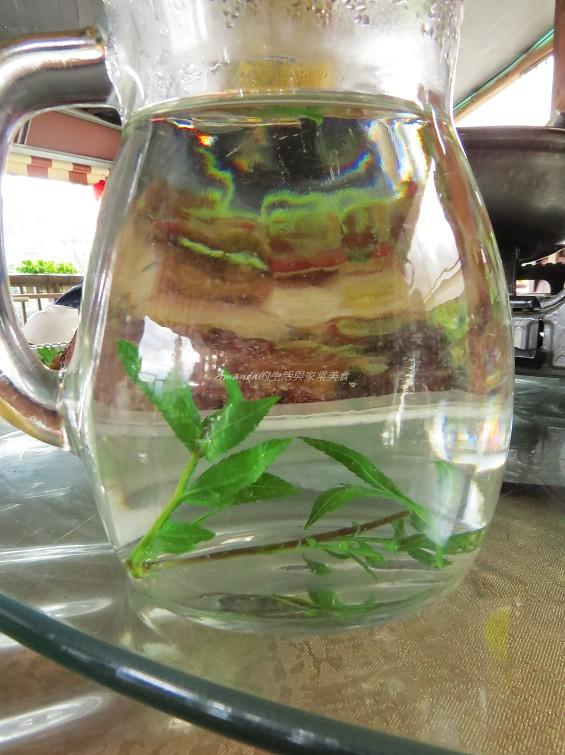 方香萬壽菊茶