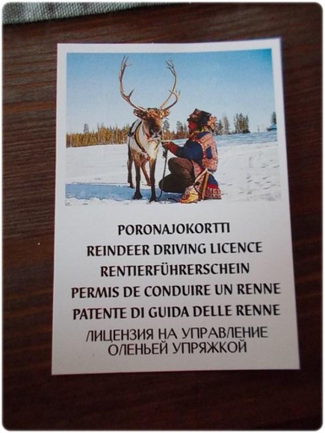 Rovaniemi (18)