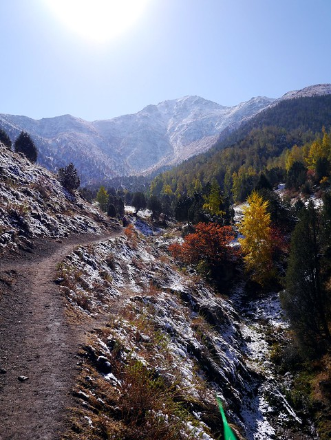 Trail to the Peak
