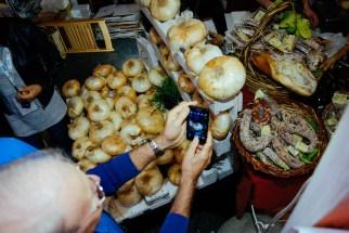 Salone del Gusto 2016: onions