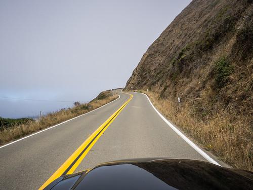 Coastal Redwoods and Fog-023