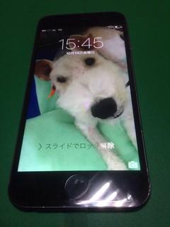 203_iPhone6Sのフロントパネル液晶割れ