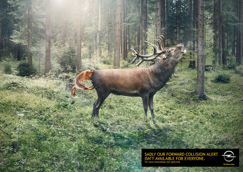 Opel - In the Ass of a cerf