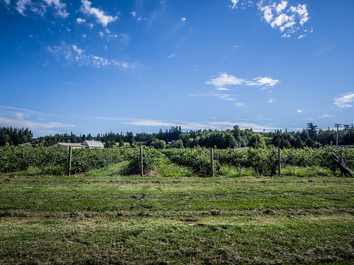 Skagit Valley and Samish Island-21
