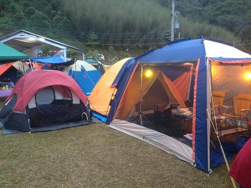 麥樹仁露營