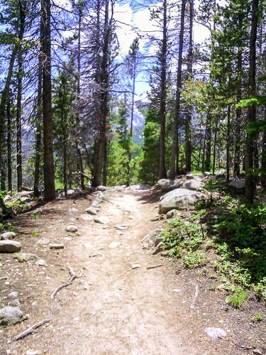 Flattop Mountain Trail