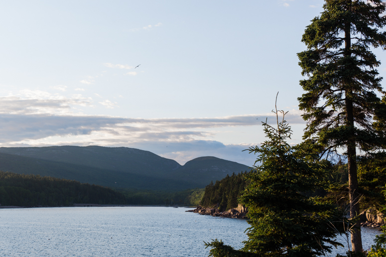 acadia national park | otter cliffs