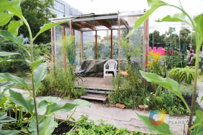 Prinzessinnengarten-4.jpg