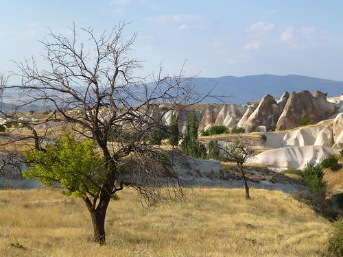 Turquie - jour 20 - Cappadoce, dans les airs et sous terre - 216 - Bağlıdere Vadisi