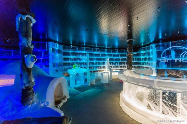 Artico Ice Bar-6