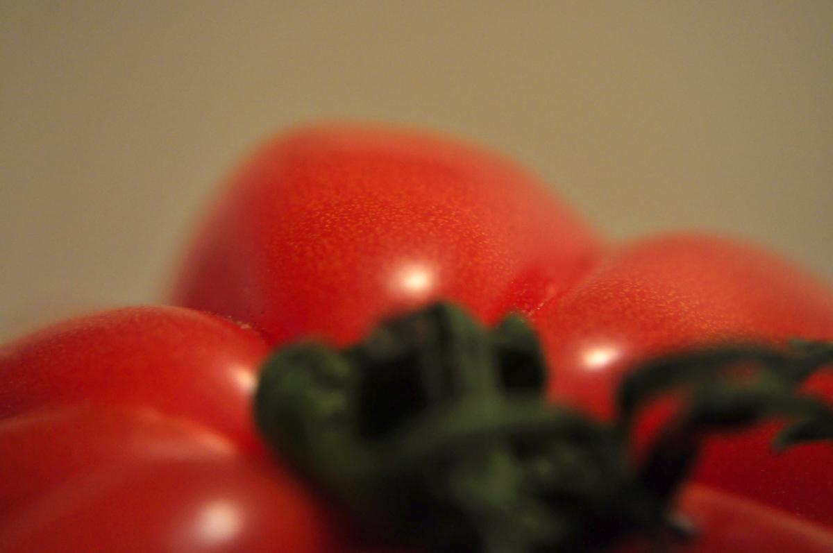 Tomate Coeur de Boeuf 1