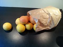 LeesVoer Grapefruitmarmelade