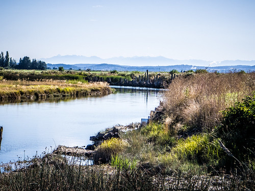 Skagit Valley and Samish Island-26