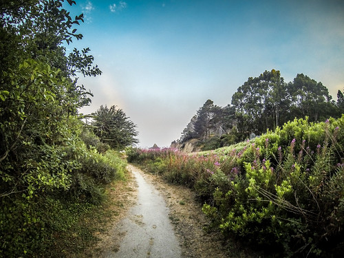 Fort Bragg Morning Beach Walk-1