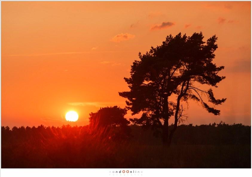 Zonsondergang in een mooie rode lucht