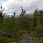 9 viajefilos en Noruega, Hardangervidda 08