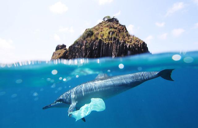 oceanos-diarioecologia
