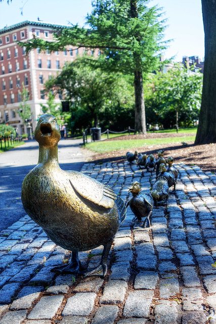 Make Way for Ducklings, Boston Public Garden.