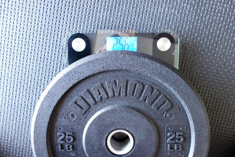 DiamondPro 25lb weight