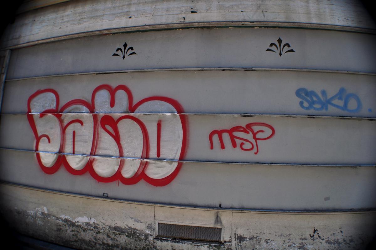 Sako (1)