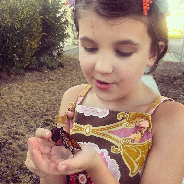Annika found an injured butterfly on our walk yesterday and is now nursing him back to health...
