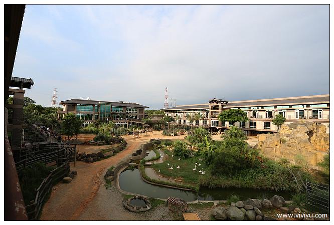 [新竹.旅遊]六福莊生態度假旅館~住在動物園裡.打開窗戶就能看動物 @VIVIYU小世界