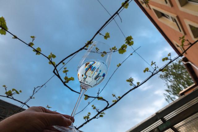 Wein an Radebeuler Abendhimmel