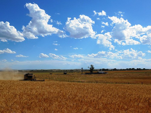 Perfect Nebraska view