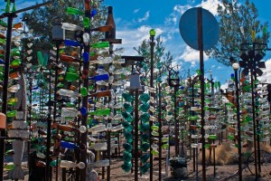 Californie - bottle tree farm