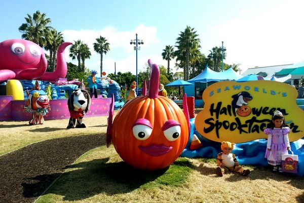Seaworld San Diego Halloween Spooktacular Pictures and
