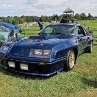 1980 Ford Mustang GT Enduro at the 2014 Radnor Hunt Concours