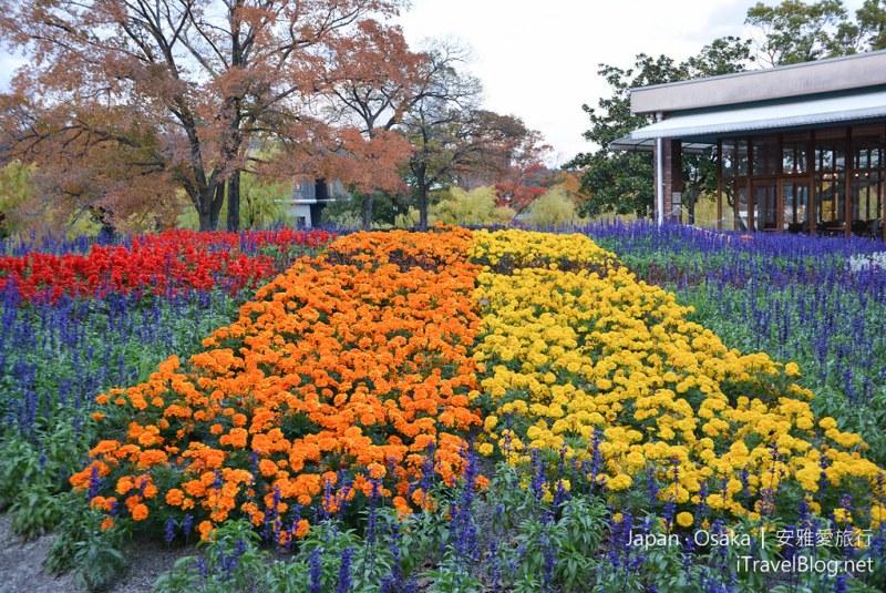 大阪赏枫 万博纪念公园 40