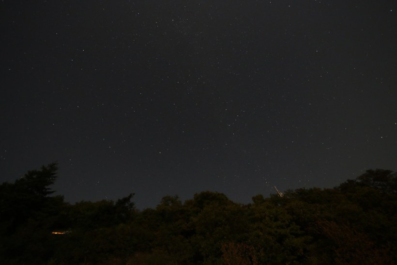 stars 024