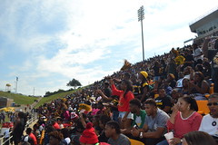 133 Homecoming Crowd