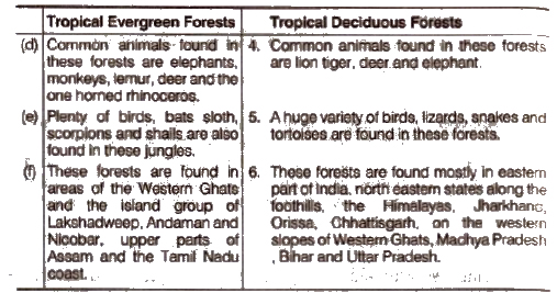 Temperate Forests Map