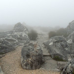 DIA-23-CAPE-TOWN-TABLE-MOUNTAIN6