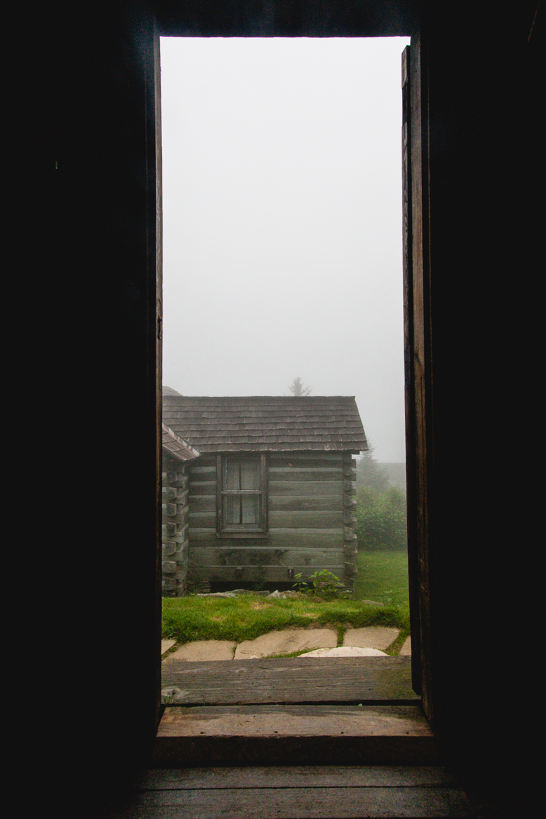 great smoky mountains / foggy morning on mt. leconte