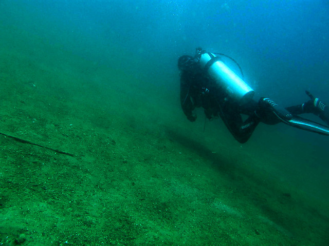 Muck Diving at Secret Bay, Anilao