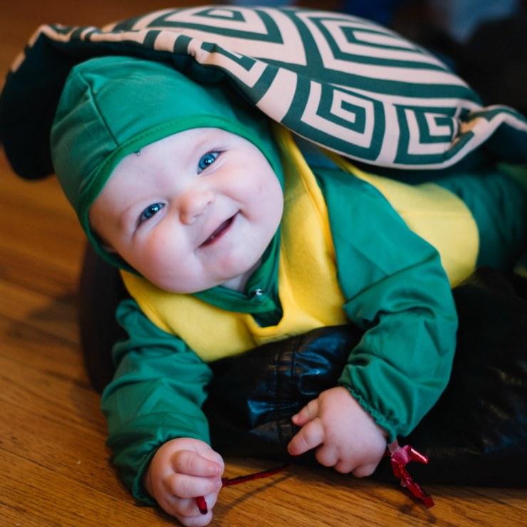 Ezra the Tortoise