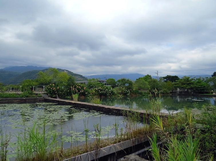 勝洋水草休閒農場 (17)