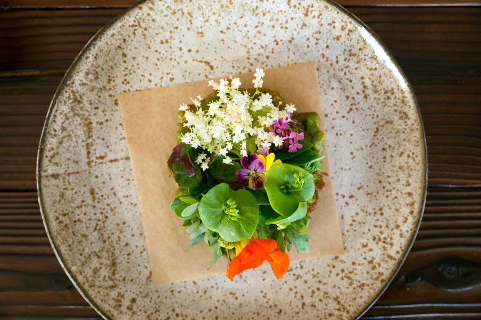 Garden tostada, crisp mustard leaf, herbs at Willows Inn, Lummi Island, USA