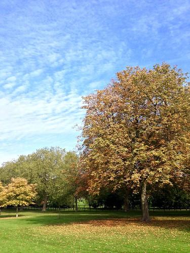 The Long Walk, Windsor.